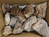 レイアウト用石 木化石 10キロ入りアソートセット 1箱 神戸店在庫